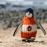 Pingvin i tröja